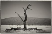 Projektion___Platz_1_F_Glasenapp_Landschaft_Namibia