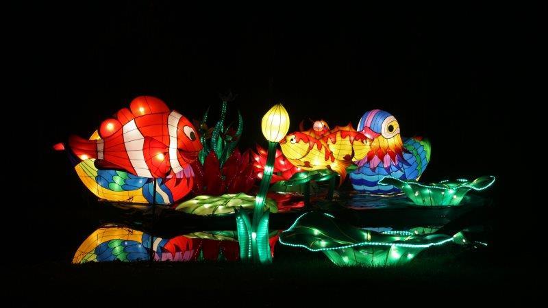 11_Falk_China_Light_Fest_2017
