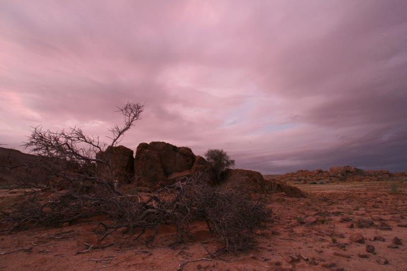 0121_031_Namib_Naukluft