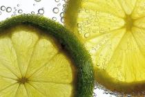 Papier_Platz_1._M_Rausch_A3_Citrusfrüchte.JPG